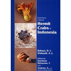 Common Littoral Hermit Crabs of Indonesia