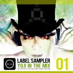 dieTunes Label Sampler 01/YOJI IN THE MIX