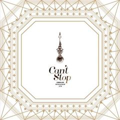 5TH MINI ALBUM : CAN'T STOP (SPECIAL EDITION)(輸入盤)
