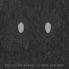 THE YELLOW MONKEY/THE YELLOW MONKEY IS HERE. NEW BEST(アナログレコード盤)