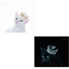 "Aimer/BEST SELECTION""blanc""(初回生産限定盤A)+""noir""(初回生産限定盤A)(外付特典:告知ポスター2種、W購入者特典クリアファイル付き)"