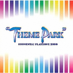 "PLAYZONE 2000 ""THEME PARK"""