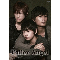 Fallen Angel DVD-BOX