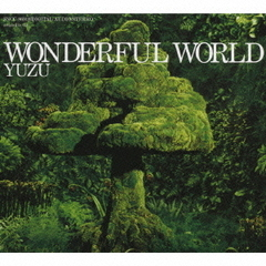 WONDERFUL WORLD