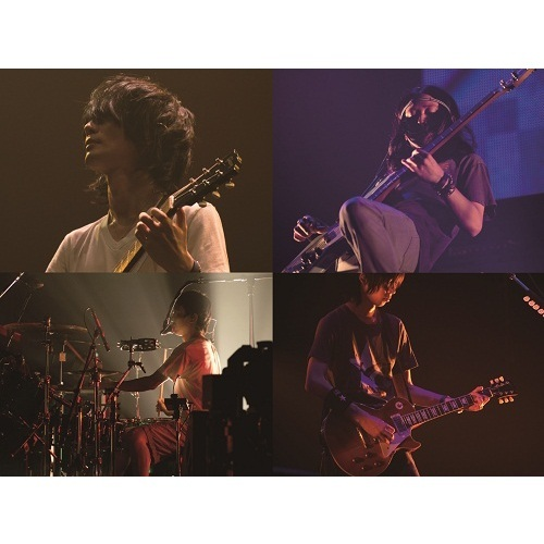 BUMP OF CHICKEN/BUMP OF CHICKEN GOLD GLIDER TOUR 2012 通常盤(Blu-ray Disc)
