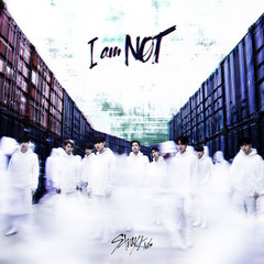 STRAY KIDS/1ST MINI PREVIEW ALBUM : I AM NOT(輸入盤)