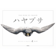 ハヤブサ THE WING OF FALCON