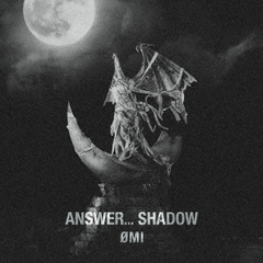 OMI/ANSWER... SHADOW(通常盤/CD)