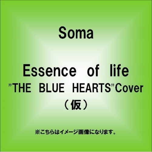Essence of life~THE BLUE HEARTS Cover~