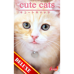 cute cats DELUXE04 マンチカン