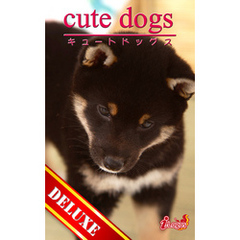 cute dogs DELUXE02 柴犬