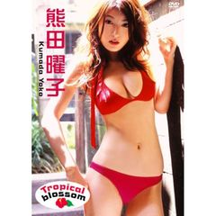 熊田曜子/Tropical blossom(DVD)