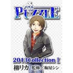 PUZZLE 2013collectionI