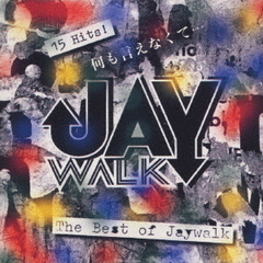 THE BEST OF JAY WALK
