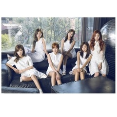 APINK/2ND ALBUM : PINK MEMORY (WHITE)(輸入盤)