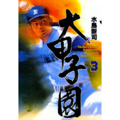 大甲子園 The best games of great koshien 3