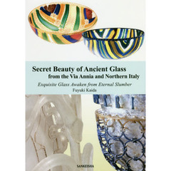 Secret Beauty of Ancient Glass from the Via Annia and Northern Italy Exquisite Glass ?
