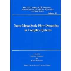 Nano‐Mega Scale Flow Dynamics in Complex Systems