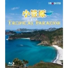 小笠原[超楽園] -Tropical Paradise-(Blu-ray Disc)