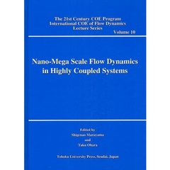 Nano‐Mega Scale Flow Dynamics in Highly Coupled Systems