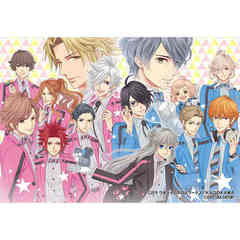 Nintendo Switch BROTHERS CONFLICT Precious Baby for Nintendo Switch 限定版