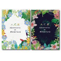 A.C.E/A.C.E ADVENTURES IN WONDERLAND(輸入盤)