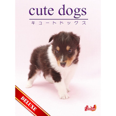 cute dogs DELUXE01 シェットランド・シープドッグ