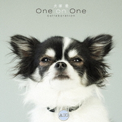 大塚愛/犬塚 愛 One on One Collaboration(CD)