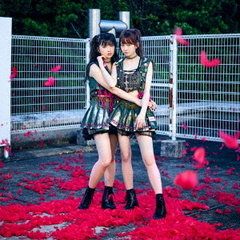 The Idol Formerly Known As LADYBABY/Pinky! Pinky!(通常盤)(セブンネット限定特典:ブロマイド(金子理江&黒宮れい絵柄))