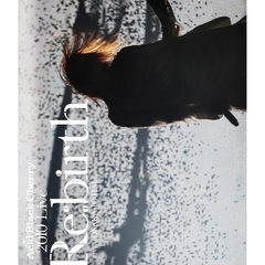 "Acid Black Cherry/2010 Live ""Re:birth"" -Live at OSAKA-JO HALL-(Blu-ray Disc)"