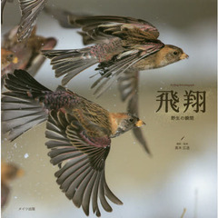 飛翔 野生の瞬間 the flying birds photographs