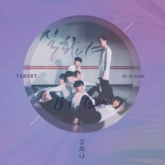 TARGET/SINGLE : IS IT TRUE(輸入盤)