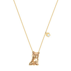 PETS:NECKLACE YORKSHIRE LTSI/GOS
